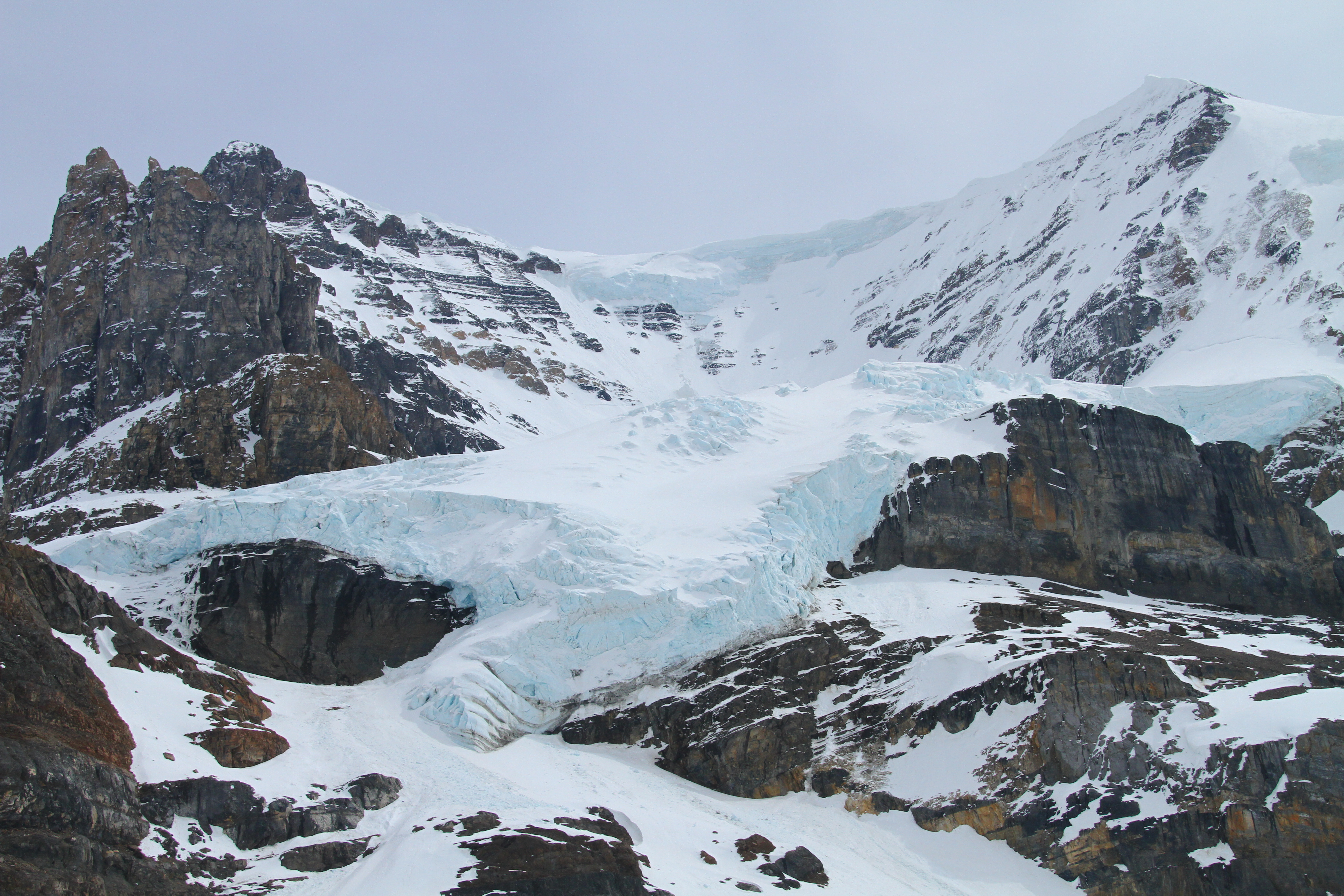 Columbia Ice Field Excursion